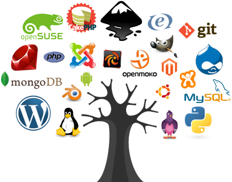 Open source software what is it? Advantages disadvantages examples.